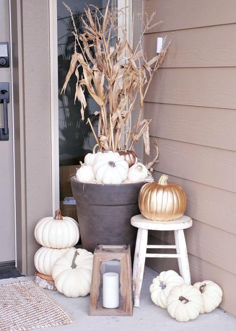 2 pumpkin pallette